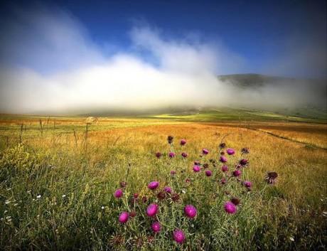 Asi iba jeden biotop, no zakrytý perinkou z oblakov je možno druhý. (http://www.pll456.estranky.sk/img/mid/4/pekne-fotky-prirody.jpg