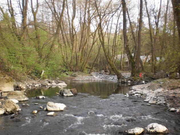 Pekný pohľad na kúsok nezregulovaného úseku potoka Neresnica s hlbočinami a perejami, kde sa dali pozorovať migrujúce ryby.