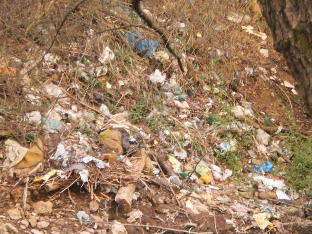 Trocha rozmazaná fotka dokumentujúca objem smetí na brehu potoka.